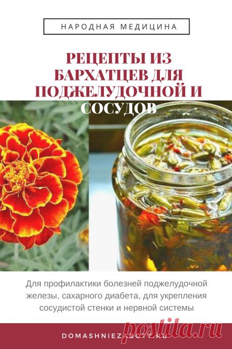 РЕЦЕПТЫ ИЗ БАРХАТЦЕВ ДЛЯ ПОДЖЕЛУДОЧНОЙ И СОСУДОВ — domashniezaboty.ru