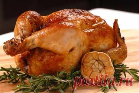 Вкусный рецепт цыпленка табака