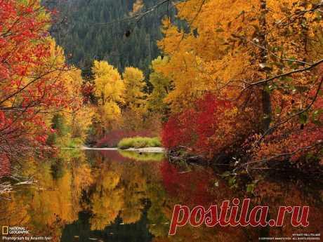 Осенний пейзаж в Каскадных горах, США. Автор фото: Ananth Iyer.