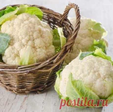 Цветная капуста – лучшие рецепты приготовления Пошаговые рецепты приготовления диетических блюд из цветной капусты. В чем польза этого овоща на организм и как употреблять его если вы худеете.