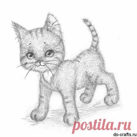 «Как нарисовать котенка поэтапно карандашом для начинающих» — карточка пользователя slavashishaev в Яндекс.Коллекциях