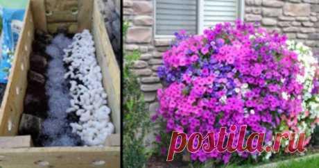 La idea para los floricultores, que alegrará | el Diablo toma Mucho se puede hacer de los materiales de circunstancias especialmente en la casa de campo o en la parte. Esta vez veréis que es posible hacer del árbol.