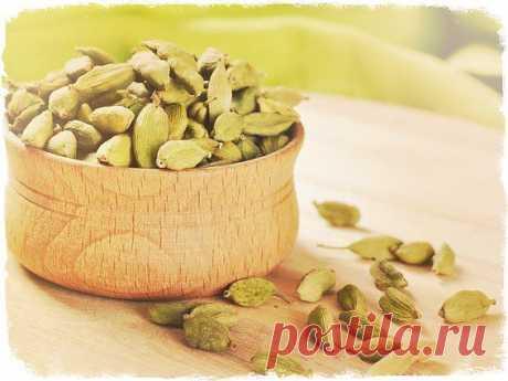 кардамон применение | Блог  о красоте и здоровье