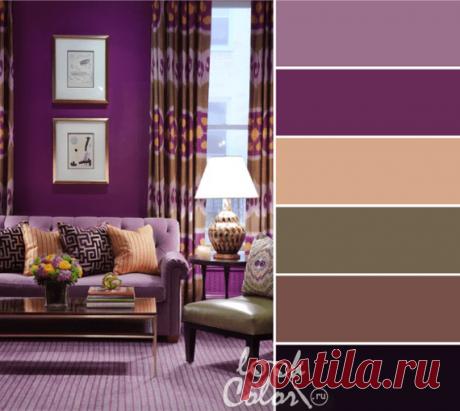 Пурпурный цвет (фото) — роскошное очарование оттенков purple. Пурпурный цвет — это какой, как он выглядит и с какими цветами сочетается