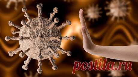 Кверцетин и витамин D в борьбе с коронавирусом