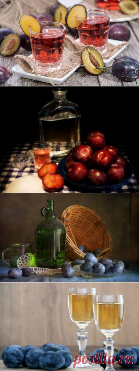 Wine and fruit liqueur from plums. Technology of preparation in house conditions   COOKERY - all PRO I go!