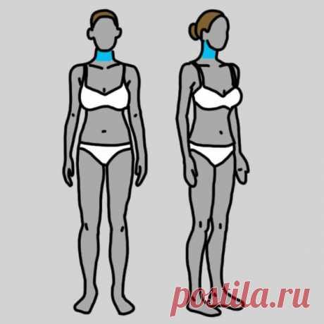 Щитовидная железа у женщин: 12 симптомов заболеваний