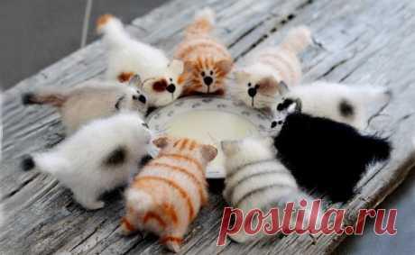 Вот такие вот котятки