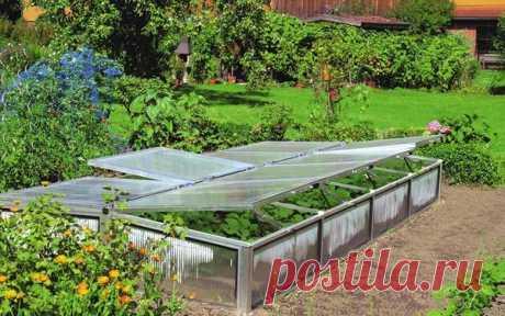 De que más vale hacer el invernadero y que en ello plantar