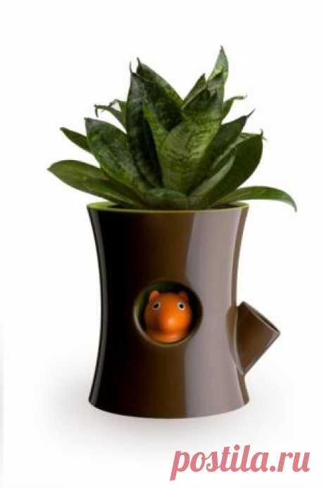 """""""Волшебный"""" самополивающийся горшок защитит твои цветы от засухи."""
