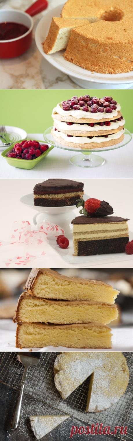 Король выпечки: виды бисквитного теста, о которых стоит знать   Сладкое Меню