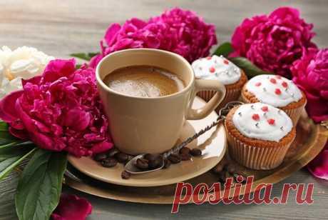 Доброе утро!… Проснуться от запаха СЧАСТЬЯ, Найти погоду прекрасной. Прихлёбывать кофе в уютном халате... Умыться, одеться — И выйти из дома, Мурлыча любимую песню. Не думать, что было и будет, А жить — каждый день — как впервые В волшебном СЕГОДНЯ…