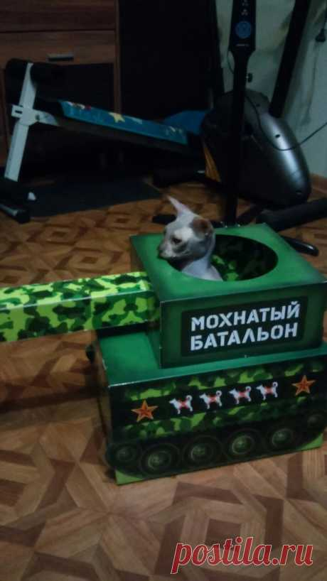Подарок на День танкиста