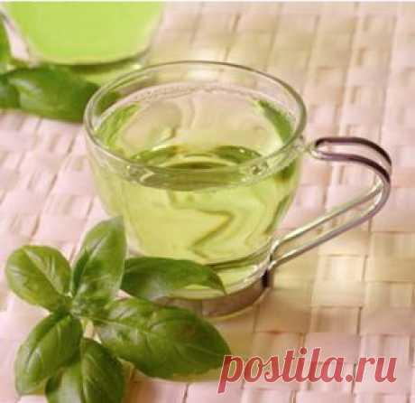 Лимфодренаж в домашних условиях с помощью травяных напитков | FEMIANA