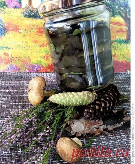 Соленые моховики на зиму - пошаговый рецепт приготовления с фото