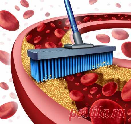 Чистка сосудов от холестерина народными средствами Состояние кровеносной системы напрямую влияет на здоровье организма в целом. Между тем, неправильный образ жизни и некоторые другие фактора могут привести к образованию на стенках сосудов так называемых холестериновых бляшек, избавиться от которых помогает чистка сосудов...