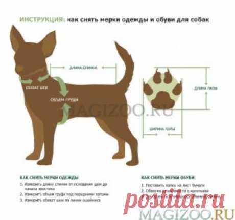 FOR MY DOGS комбинезон для собак Тигр черный для мальчиков FW566-2018 M купить в интернет-магазине по цене от 1 627 руб. руб., доставка из зоомагазина по Москве и Туле