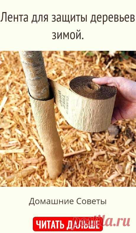 Лента для защиты деревьев зимой.