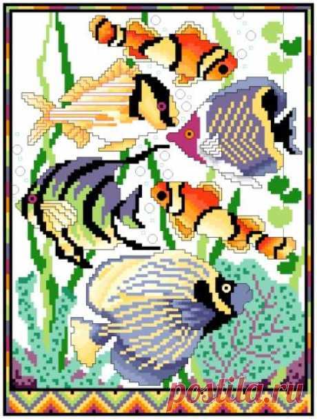 Цветные рыбки - Рыбы и морские обитатели - Фауна - СХЕМЫ - ВЫШИВКА КРЕСТОМ