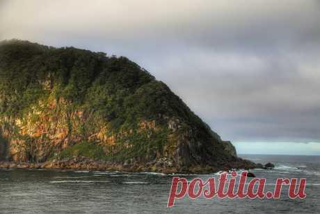 Моя кругосветка: Новая Зеландия.   ПИЛИГРИМ   Яндекс Дзен