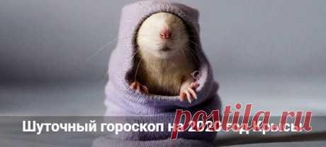 Шуточный гороскоп на 2020 год Крысы: в стихах и прозе Шуточный гороскоп на 2020 год Крысы в стихах и прозе для всех знаков зодиака. Смешной и прикольный астрологический прогноз с юмором.