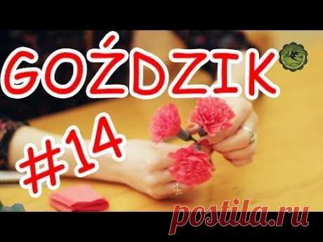 Kwiatki z bibuły #14 - goździk