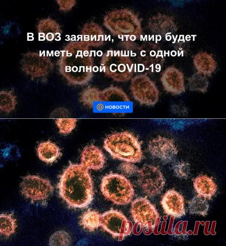 В ВОЗ заявили, что мир будет иметь дело лишь с одной волной COVID-19 - Новости Mail.ru