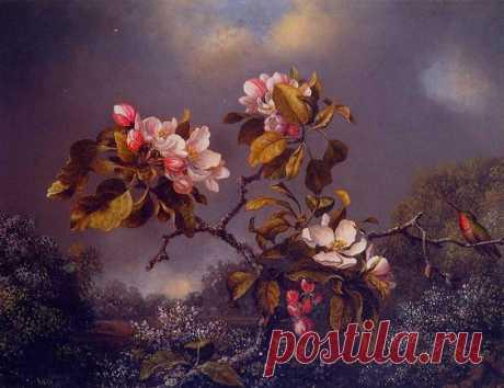 Martin Johnson Heade - Apple Blossoms and Hummingbird (1871)