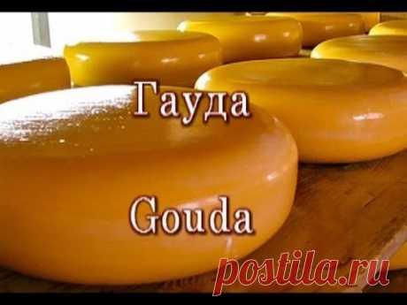 Готовим твердый сыр (классический рецепт Гауда)