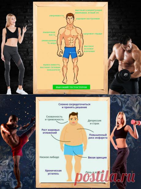 """""""главный мужской гормон"""" - 3 простых и эффективных способа как увеличить тестостерон"""