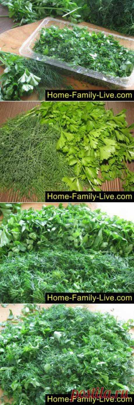 Зелень на зиму - пошаговый фоторецепт - заготовить зелень на зиму заморозкой
