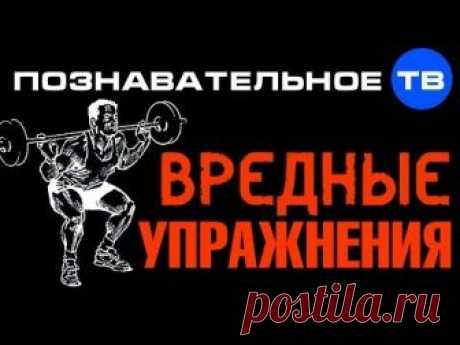 Какие упражнения не нужно делать, чтобы сохранить свой позвоночник - 13 Апреля 2015 - Из жизни.ру - ИЗ ЖИЗНИ.ру
