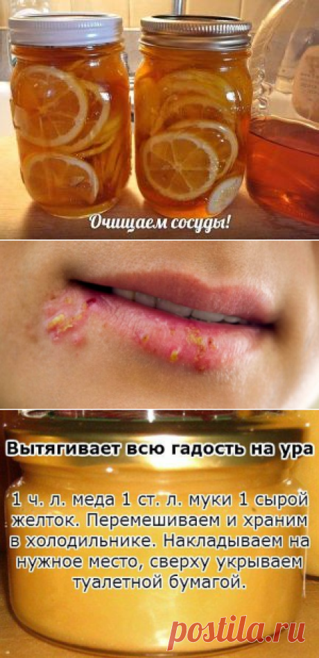 Ваше здоровье | Тамара Загаевская | Фотографии и советы на Постиле