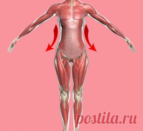 6 минут для похудения: гимнастика военного врача