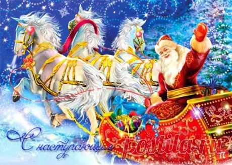 Милый Дедушка Мороз, борода из ваты, мне подарки не нужны! Увеличь зарплату!!!