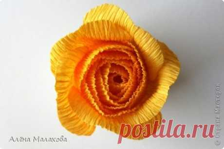 Rose from a crepe paper