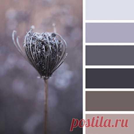 Серый цвет в интерьере в правильных пропорциях и сочетаниях способен творить чудеса. Смотрите фотографии интерьеров и палитры серого от Пантон  на сайте Стоун Флор Новосибирск