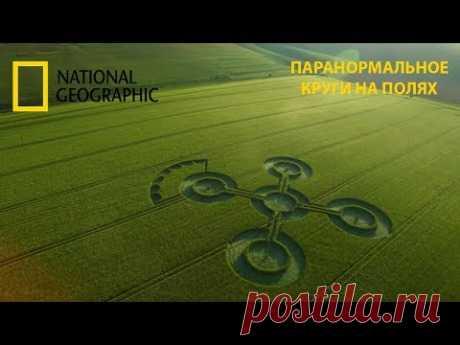 Паранормальное : Круги на полях.National Geographic - YouTube