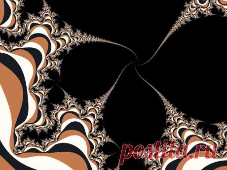 Brown Fractal Spirals  Free Stock Photo HD - Public Domain Pictures