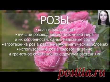 """Вебинар """"Розы"""""""