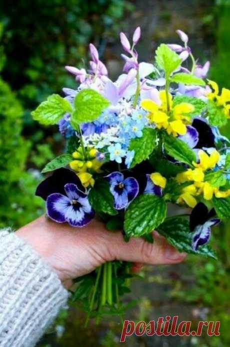 Как она нужна нам! Такая долгожданная, всегда юная, прекрасная, пробуждающая нас, возвращающая желание жить, любить, надеяться. Весна!