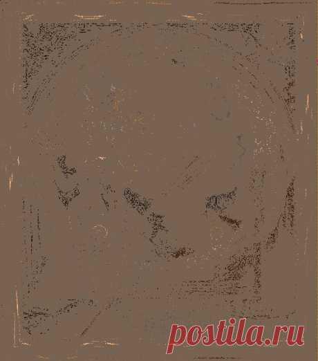 Оригинальные идеи костюмов на Хэллоуин, фото и мастер-классы несложных нарядов без специальных навыков и особых затрат: Аватар, Чертик, Пожиратель пауков, Вампир, граф Дракула и его невеста, маркиз де Сад, Дарт Вейдер, Баба-Яга, Ведьма, Фея, Доктор-убийца, Зомби, Мумия, Скелет, Привидение.   Сделайте костюм своими руками, Halloween жаждет вашего креатива!