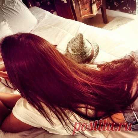 6 рецептов лечения волос