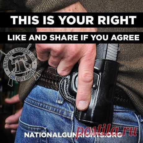 ... | Weapons & 2nd Amendment stuff