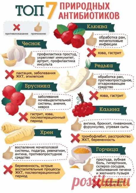 Антибиотики: классификация, правила и особенности применения | ОкейДок