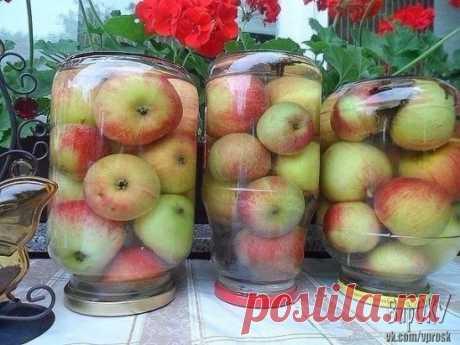 Яблочки моченые. Простой рецепт.  Мочение яблок – один из замечательных способов заготовки этих очень вкусных и полезных плодов.  К сожалению, сейчас такую заготовку мало кто из садоводов умеет и стремится сделать осенью.  И напрасно! Ведь мочёные яблоки сохраняют все свои ценные свойства, приобретая пикантный вкус и аромат благодаря пряностям, используемым при мочении.  Крепкие яблоки, желательно поздних зимних сортов сложить в 3-х литровые банки залить холодной водой, на...