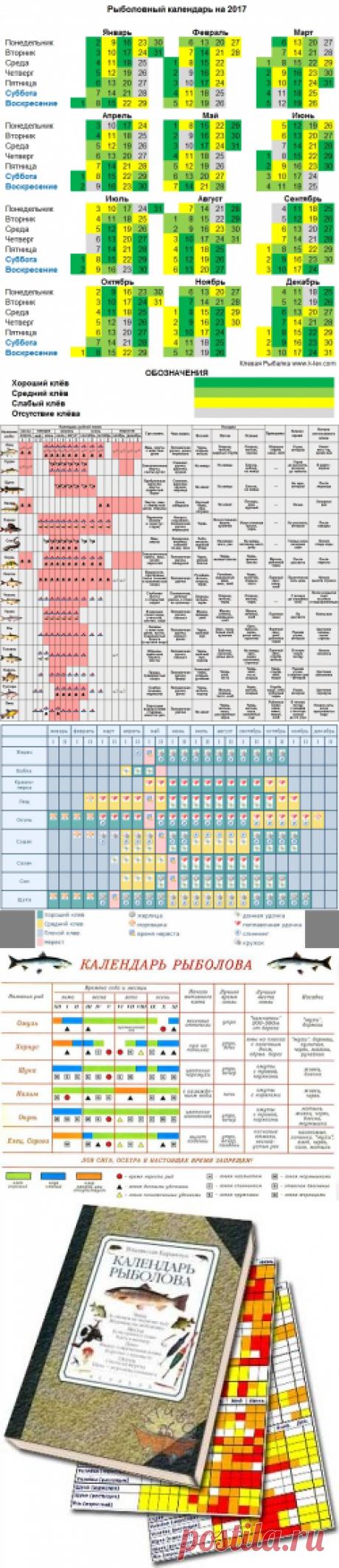 Календарь рыболова на 2017 год по месяцам и дням - Клёвая рыбалка