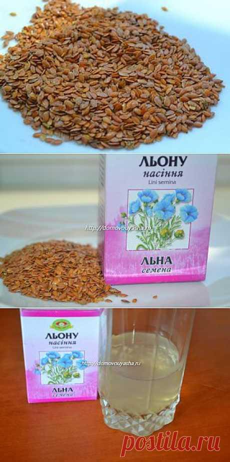 Семена льна польза и вред. Применение семени льна в народной медицине.   Народные знания от Кравченко Анатолия