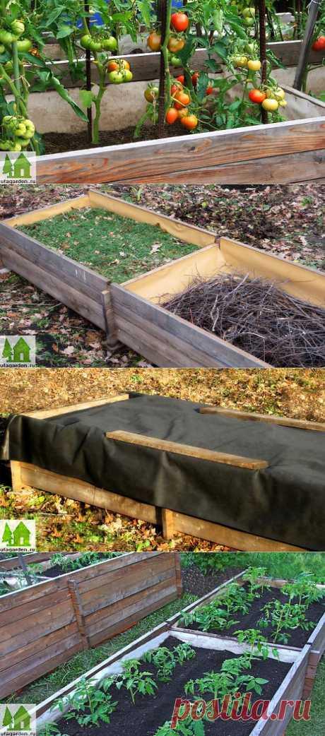 Теплые грядки | Дачная жизнь - сад, огород, дача