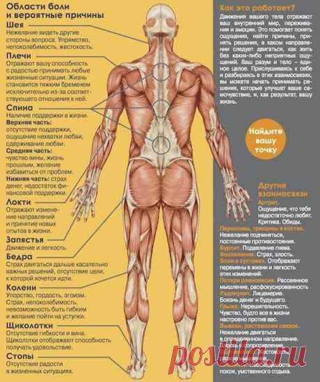 PSYCHOSOMATICS OF MUSCULAR SPASMS.